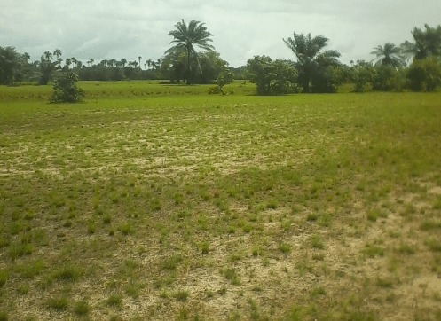 History of Land ownership in Nigeria